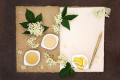 Elderflower Champagne Ingredients Royalty Free Stock Photography