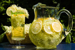 Elderflower drink. Drink of elder flowers is very refreshing and healthy Stock Photo