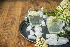 Elderflower drink with elderberry flowers Stock Photos