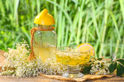 Elderflower drink Stock Photography