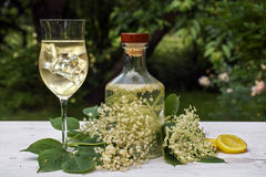 Elderflower drink hugo, a refreshing prosecco cocktail with ice. Cubes in a glass, blossoms, lemon slices and a bottle with syrup on a white table in the garden royalty free stock images