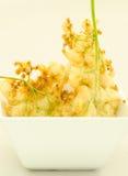 Elderflower fritters Royalty Free Stock Photo
