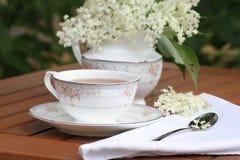 Elderflower herbata Fotografia Royalty Free