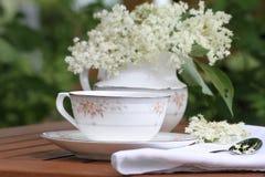 Elderflower herbata Obraz Royalty Free