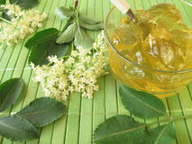Elderflower jam Stock Photography