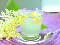 Elderflower juice with lemon Royalty Free Stock Photography