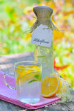 Elderflower and lemon juice Stock Images