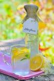 Elderflower and lemon juice Stock Images