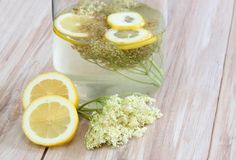 Elderflower lemonade, Sambucus nigra Stock Photo