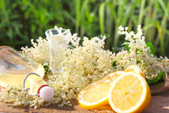 Elderflower liqueur, tasting Stock Image
