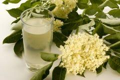 Elderflower-syrup in a glass. Homemade elderflower-syrup in a glass Royalty Free Stock Photo