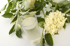 Elderflower syrup in a glass. Home made elderflower syrup in a glass Stock Photography