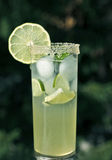 Elderflower syrup with lime and ice Royalty Free Stock Photography