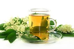 Elderflower tea Royalty Free Stock Photography