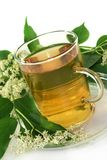 Elderflower tea Stock Photo
