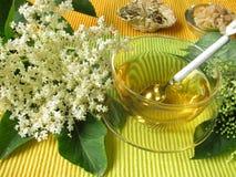 Elderflower tea Royalty Free Stock Photos