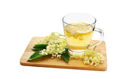 Elderflower tea and blossoms isolated Stock Image