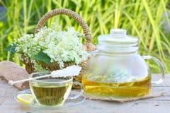 Elderflower tea, elder Royalty Free Stock Photos