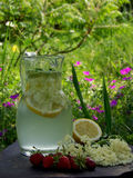 Elderflowerdrank Royalty-vrije Stock Fotografie