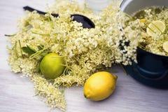 Elderflowers Stock Image