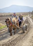 Homeward bound. Couple returning home on horse cart in the Balkans stock image