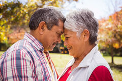 An elderlry couple embracing and romancing at park Stock Images