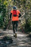 Elderly athlete man running mountain marathon along a forest trail Stock Photos