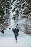 Elderly athlete running in winter woods in cold weather of alley in forest Stock Photos