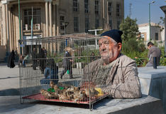 Elderly birds trader sells sparrows on the market street Stock Image