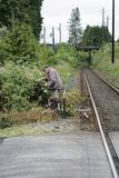 Elderly caucasian man trimming brambles by a train track stock photography