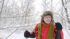 Elderly Caucasian smiling man with Hiking Sticks walks through a snowy forest. Thick dense thicket of trees and roots in. In the snow-covered forest. Hike and stock video footage