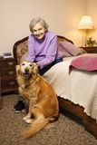 Elderly Caucasian woman in bedroom with dog. Stock Photo