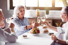 Elderly ceerful woman drinking with her family. For your health. Smiling pleasant elderly women drinking champagne with her lovely husband and enjoying the time Stock Photo