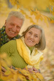 Elderly couple in autumnal forest Royalty Free Stock Photos