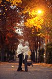 Elderly couple in autumnal forest Royalty Free Stock Photo
