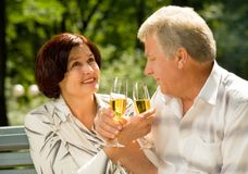 Elderly couple celebrating Royalty Free Stock Photography