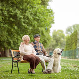 Elderly couple with a dog on a bench in a park Royalty Free Stock Photos