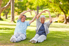 Elderly couple doing their stretches in the park Royalty Free Stock Photos