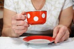 Elderly couple drinking tea Stock Photos