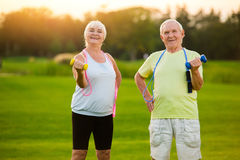 Elderly couple with dumbbells. Stock Photography