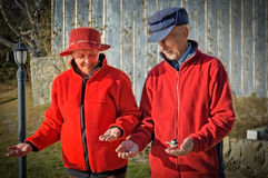 Elderly couple feeding the birds royalty free stock images