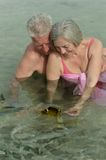Elderly couple feeding fish Royalty Free Stock Photos
