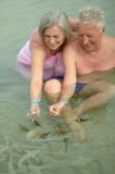 Elderly couple feeding fish Royalty Free Stock Image
