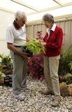 Elderly Couple in Fernery Stock Photos