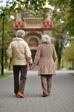 Elderly couple goes away through the alley in autumn park. Happy elderly couple goes away through the alley in autumn park Royalty Free Stock Images