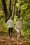 Elderly couple goes away through the alley in autumn park Royalty Free Stock Images