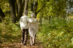 Elderly couple goes away through the alley in autumn park Stock Photos