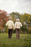 Elderly couple goes away through the alley in autumn park. Happy elderly couple goes away through the alley in autumn park Stock Photography