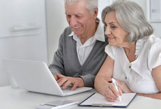 Elderly couple with a laptop Royalty Free Stock Photo