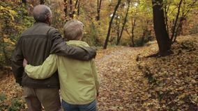 Elderly couple in love embracing in autumn stock footage